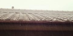 雨樋について
